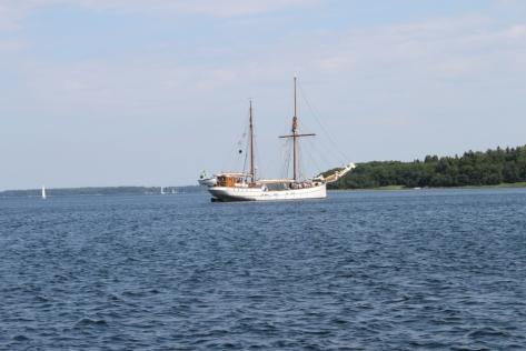 Aktivt båtliv på fjärden